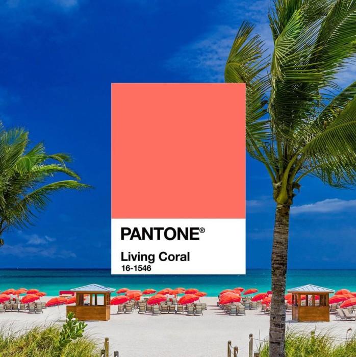 色彩權威Pantone公布2019年度色彩!『 Living Coral 活珊瑚橘 』溫暖又充滿生命力